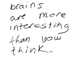 brains are more interesting than you think